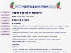 Paper Bag Book Reports Lesson Plan