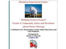 Community Video and Brochure about Horse Therapy Lesson Plan