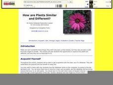 How Are Plants Similar And Different? Lesson Plan