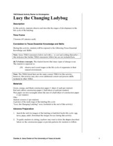 Lucy the Changing Ladybug Lesson Plan