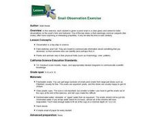 Snail Observation Exercise Lesson Plan