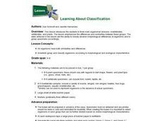 Learning About Classification Lesson Plan