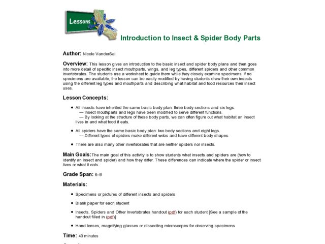 Introduction To Insect & Spider Body Parts Lesson Plan for