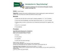 Introduction To Bug Collecting Lesson Plan