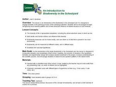 An Introduction to Biodiversity in the Schoolyard Lesson Plan