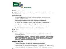 Lessons: Food Web Lesson Plan