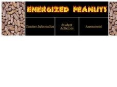 Energized Peanuts Lesson Plan