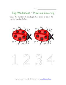 Bug Worksheet - Practice Counting Worksheet