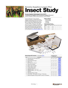 Insect Study Lesson Plan