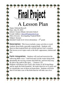 Investigating Tropical Birds Lesson Plan
