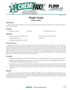 Magic Genie Lesson Plan