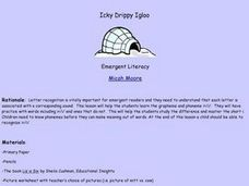 Icky Drippy Igloo Lesson Plan