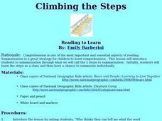 Climbing the Steps Lesson Plan