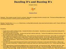 Dazzling D's and Buzzing B's Lesson Plan