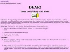 Drop Everything And Read Lesson Plan