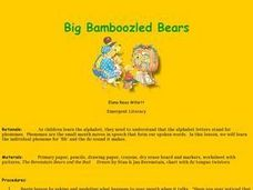Big Bamboozled Bears Lesson Plan