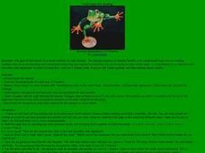 """Toad Leaps into Reading"" Lesson Plan"