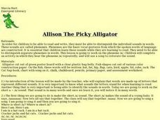 Allison The Picky Alligator Lesson Plan