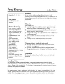 Food Energy Lesson Plan