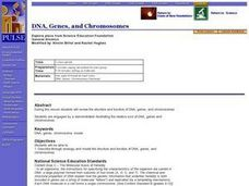 DNA, Genes, and Chromosomes Lesson Plan