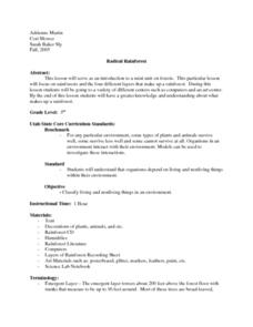 Radical Rainforest Lesson Plan