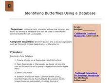 Identifying Butterflies Using a Database Lesson Plan
