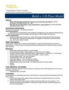 Build a 3-d Plant Model Lesson Plan