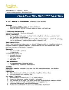 POLLINATION DEMONSTRATION Lesson Plan