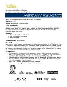 Forest Food Web Activity Lesson Plan