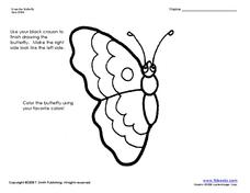 Butterfly Symmetry Worksheet