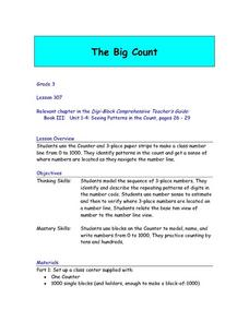 The Big Count Lesson Plan