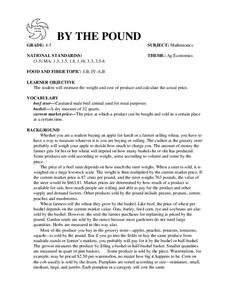 BY THE POUND Lesson Plan