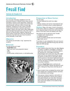 Fossil Find Lesson Plan