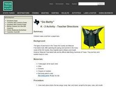 """Go Batty"" Lesson Plan"