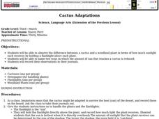 Cactus Adaptations Lesson Plan
