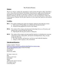 World of Protists Lesson Plan