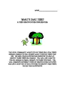 What's That Tree? Lesson Plan