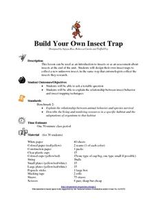 Build Your Own Insect Trap Lesson Plan