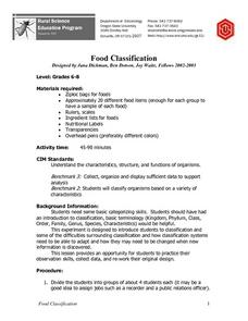 Food Classification Lesson Plan
