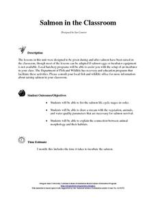 Salmon in the Classroom Lesson Plan