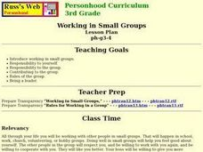 Working in Small Groups Lesson Plan