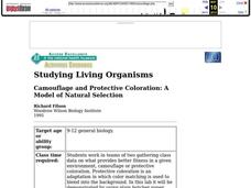 Camouflage and Protective Coloration: A Model of Natural Selection Lesson Plan