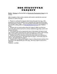 Egg Structure Project Lesson Plan