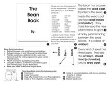 The Bean Book Lesson Plan
