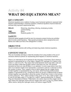 Activity #4 What Do Equations Mean? Lesson Plan