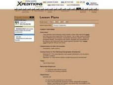 Forest Features Lesson Plan