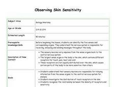 Observing Skin Sensitivity Lesson Plan