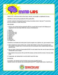 Mind Libs Lesson Plan