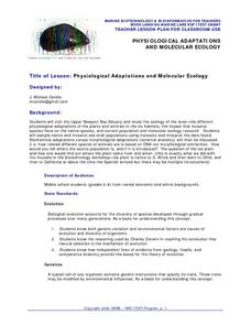Physiological Adaptations Lesson Plan