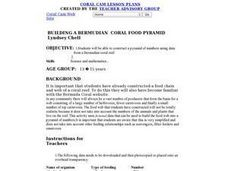 Science: Coral Reef Food Pyramid Lesson Plan